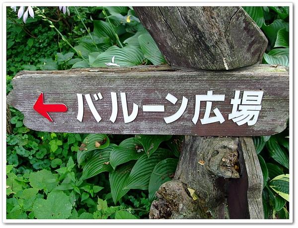 北海道之旅- (24).jpg