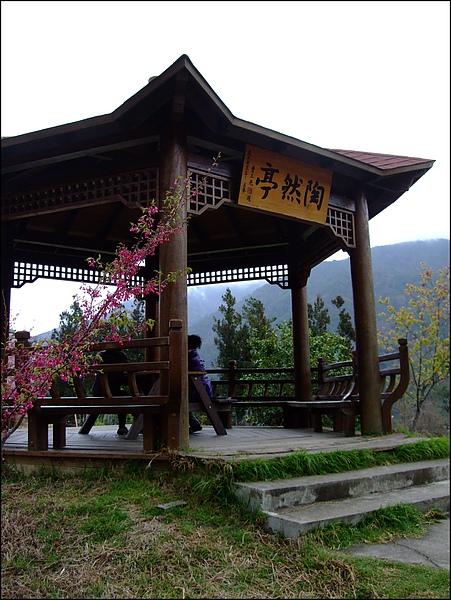 武陵農場- (51).jpg