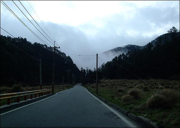 武陵農場- (58).jpg