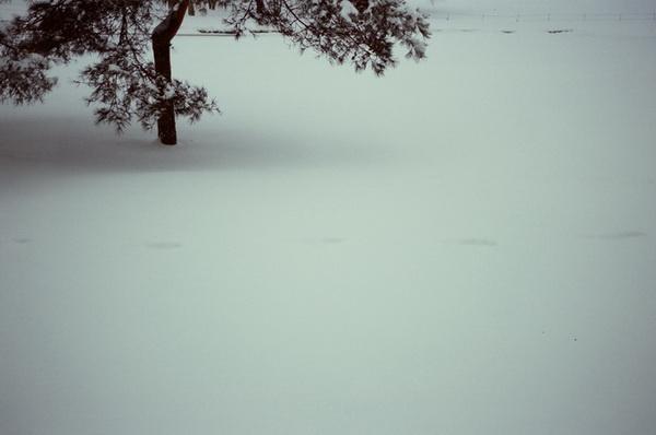 J_Film034.JPG