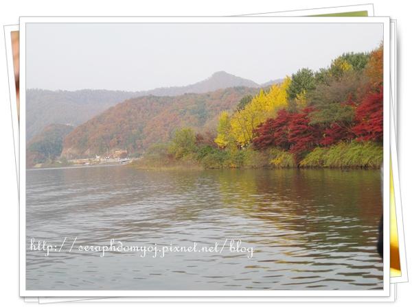 韓國 363