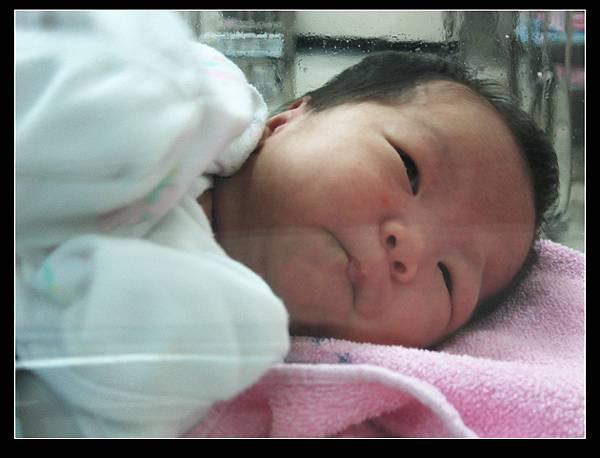 Penny's Baby (1).jpg