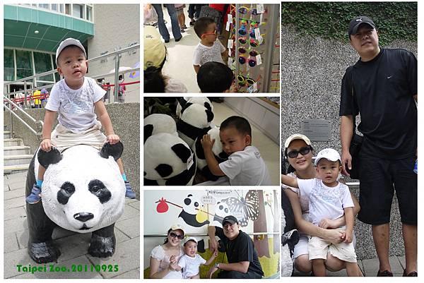 With Panda.jpg