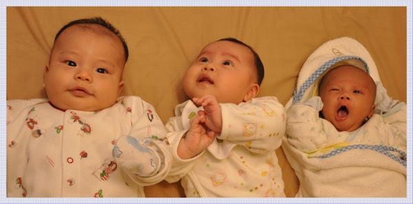 3 babies-1.jpg