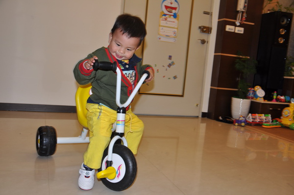 1Y5M-a3_bicycle.jpg