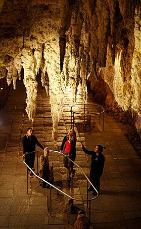 Waitomo-Glowworm-Caves-New-Zealand-Girl-Guides