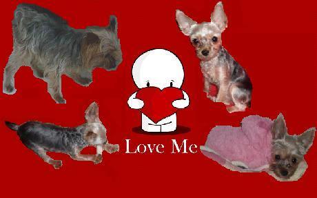 love wallpaper 10.jpg