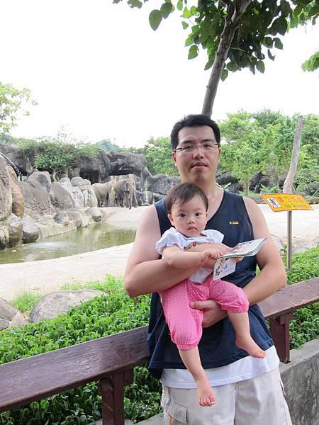 20110619_20_大象.jpg