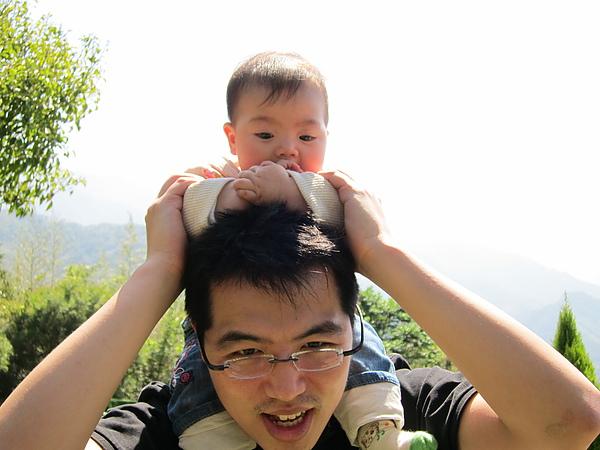 20110226_25_綠光森林.JPG