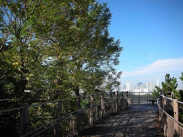 台場海濱公園的木製步道