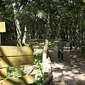 井之頭公園森林小徑