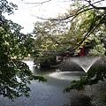 井之頭公園的小湖
