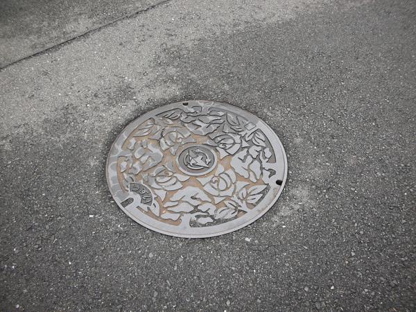 各地都有自己專屬的水溝蓋圖案