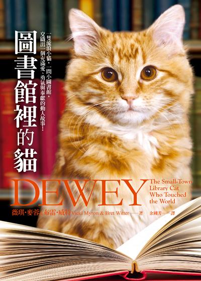 圖書館裡的貓.jpg