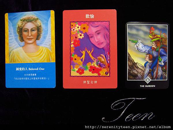 2013TriCard (4)