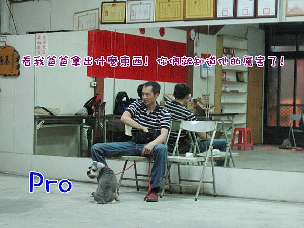 新竹_社會化 _Pro 拷貝拷貝.jpg