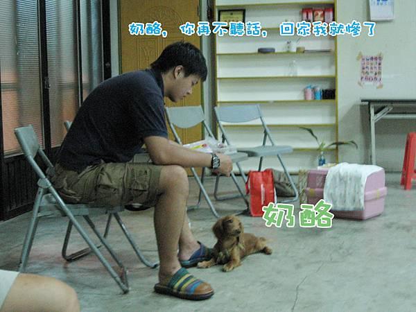 新竹_社會化 _奶酪 拷貝.jpg