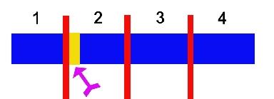 004.切割-2.jpg