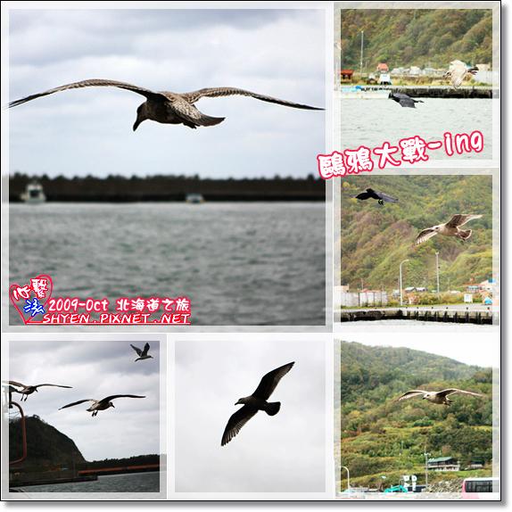 北海道之旅20.jpg