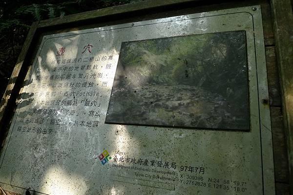 P1100987.jpg