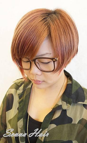 DSC09310_副本.jpg