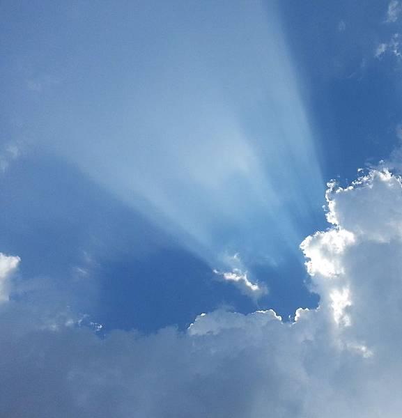 如果雲知道 (1)