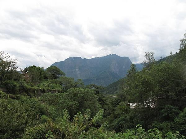 106.05.26-阿源茶園之行 青翠山巒 (9)