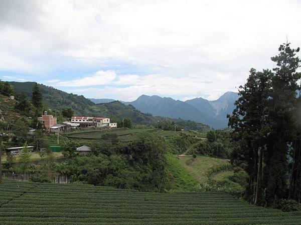 106.05.26-阿源茶園之行 青翠山巒 (8)