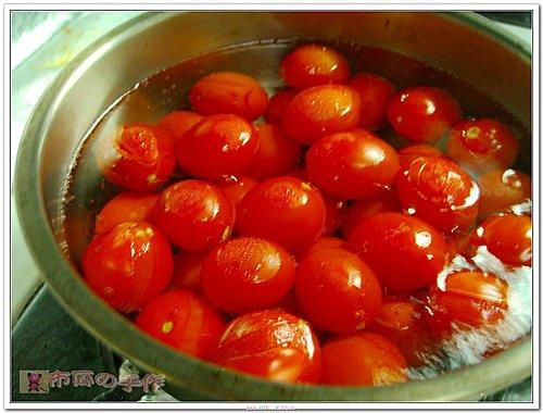 2009 酸酸甜甜小蕃茄-4