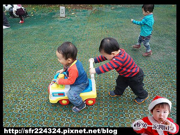 兔寶_五股生態莊園7
