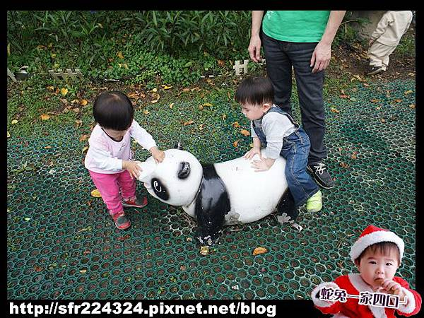 兔寶_五股生態莊園10
