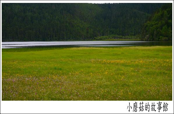 碧塔海(上)102.8.5.(1).JPG