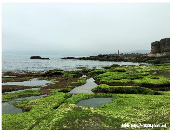 105.04.09.(189)金山-燭台嶼神秘海岸.JPG