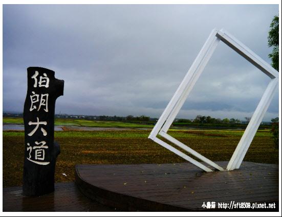 105.01.30.(38)台東-池上伯朗大道.JPG