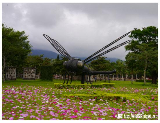 105.12.03.(10)知卡宣森林公園.JPG