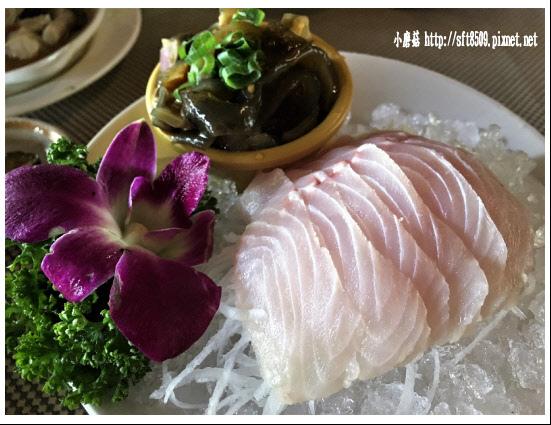 106.2.4.(36)峇里森林‧鱘龍魚套餐.JPG