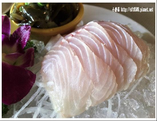 106.2.4.(37)峇里森林‧鱘龍魚套餐.JPG
