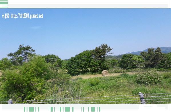 106.7.8.(6)前往大、小沼國定公園的沿途景緻.JPG