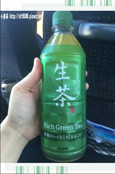 106.7.8.(29)這款生茶好喝喲!.JPG
