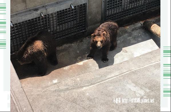 106.7.9.(27)昭和新山熊牧場.JPG