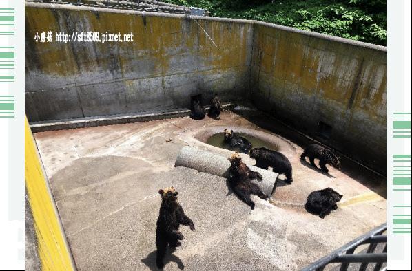 106.7.9.(28)昭和新山熊牧場.JPG