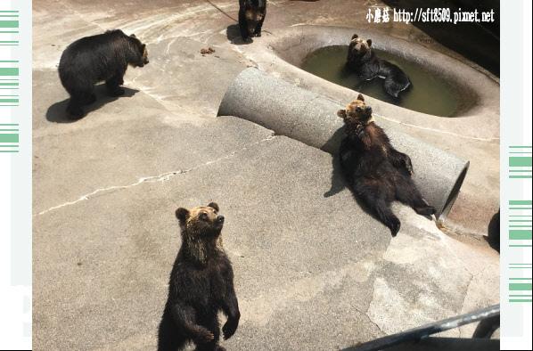 106.7.9.(35)昭和新山熊牧場.JPG