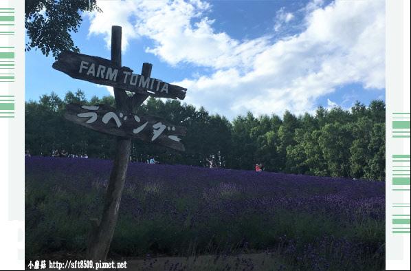 106.7.10.(2)富田農場.JPG