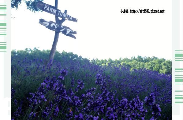 106.7.10.(3)富田農場.JPG
