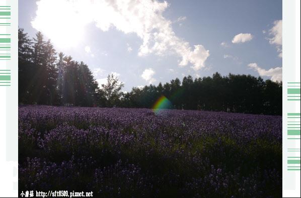 106.7.10.(13)富田農場.JPG