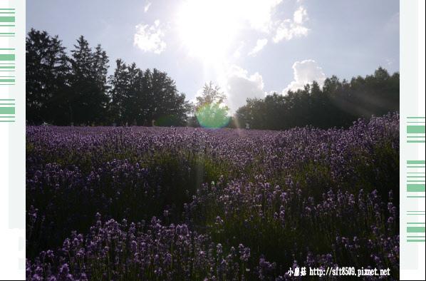 106.7.10.(43)富田農場.JPG