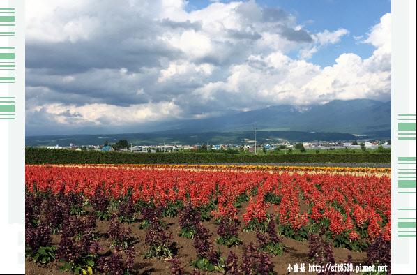 106.7.10.(56)富田農場.JPG