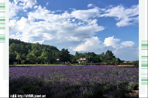 106.7.10.(85)富田農場.JPG