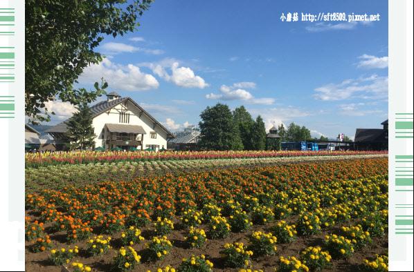 106.7.10.(90)富田農場.JPG