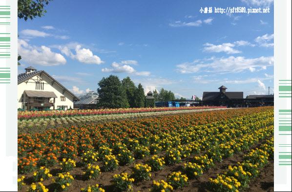 106.7.10.(91)富田農場.JPG